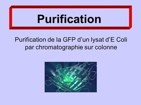 Purification Purification de la GFP dun lysat dE Coli par chromatographie sur colonne.