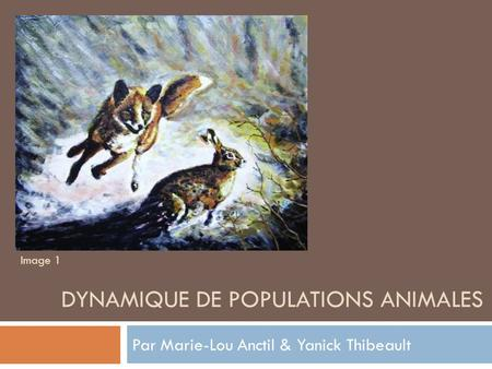 Dynamique de populations animales