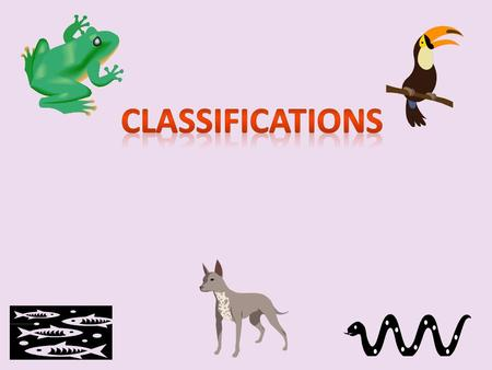 Classifications.