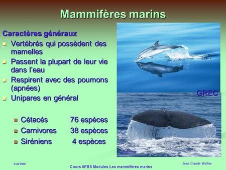 Cours AFBS Modules Les mammifères marins