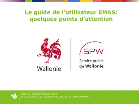 1 Le guide de lutilisateur EMAS: quelques points dattention.