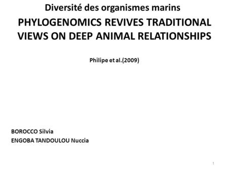 PHYLOGENOMICS REVIVES TRADITIONAL VIEWS ON DEEP ANIMAL RELATIONSHIPS Philipe et al.(2009) BOROCCO Silvia ENGOBA TANDOULOU Nuccia 1 Diversité des organismes.
