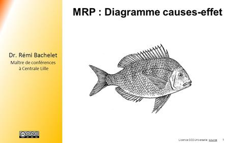MRP : Diagramme causes-effet