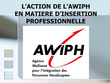 LACTION DE LAWIPH EN MATIERE DINSERTION PROFESSIONNELLE.