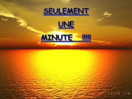 SEULEMENTUNE MINUTE !!!!! SEULEMENT UNE MINUTE !!!!!