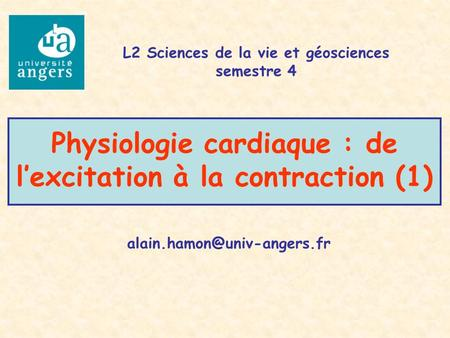 Physiologie cardiaque : de l'excitation à la contraction (1)