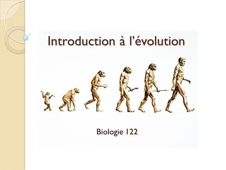 Introduction à lévolution Biologie 122. Manuel vert, p.113.