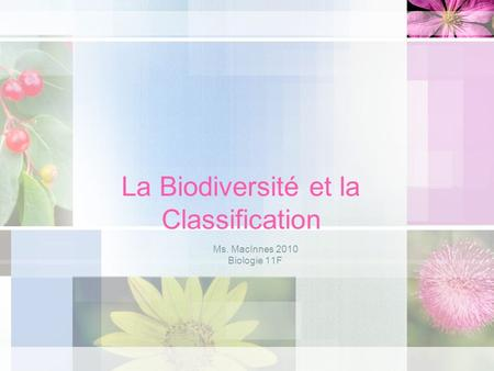 La Biodiversité et la Classification Ms. MacInnes 2010 Biologie 11F.