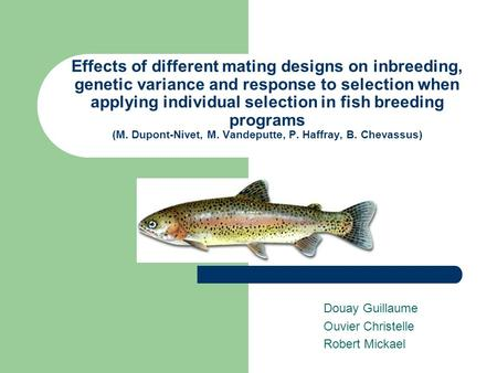 Effects of different mating designs on inbreeding, genetic variance and response to selection when applying individual selection in fish breeding programs.