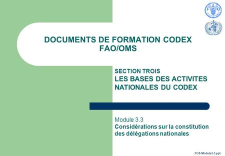 DOCUMENTS DE FORMATION CODEX FAO/OMS SECTION TROIS LES BASES DES ACTIVITES NATIONALES DU CODEX Module 3.3 Considérations sur la constitution des délégations.