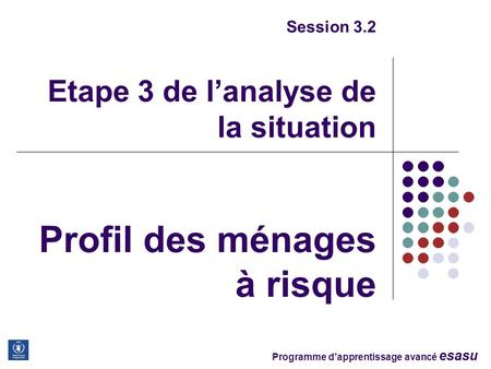Programme dapprentissage avancé esasu Session 3.2 Etape 3 de lanalyse de la situation Profil des ménages à risque.