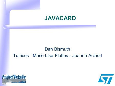 1 JAVACARD Dan Bismuth Tutrices : Marie-Lise Flottes - Joanne Acland.
