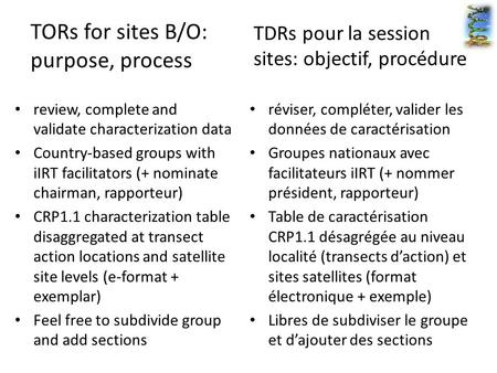 TORs for sites B/O: purpose, process review, complete and validate characterization data Country-based groups with iIRT facilitators (+ nominate chairman,