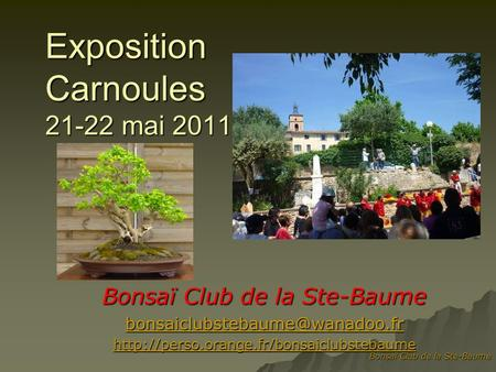 Exposition Carnoules mai 2011