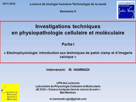 Investigations techniques en physiopathologie cellulaire et moléculaire Partie I « Electrophysiologie: introduction aux techniques de patch clamp et d'imagerie.