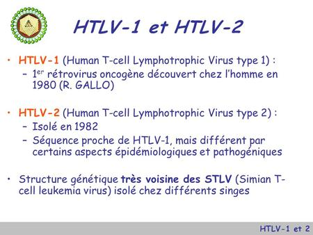 HTLV-1 et HTLV-2 HTLV-1 (Human T-cell Lymphotrophic Virus type 1) :