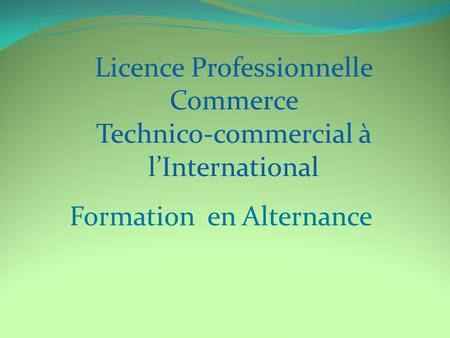Formation en Alternance Licence Professionnelle Commerce Technico-commercial à l'International.