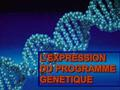 L'EXPRESSION DU PROGRAMME GENETIQUE