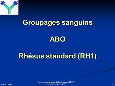 Groupages sanguins ABO Rhésus standard (RH1)