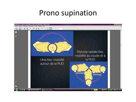 Prono supination.