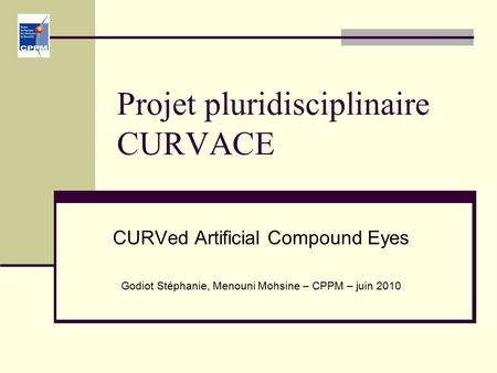 Projet pluridisciplinaire CURVACE CURVed Artificial Compound Eyes Godiot Stéphanie, Menouni Mohsine – CPPM – juin 2010.