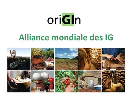 Alliance mondiale des IG. oriGIn: Union est la force!  oriGIn: Alliance mondiale des IG  Créée en 2003 en tant qu'organisation à but non lucratif 