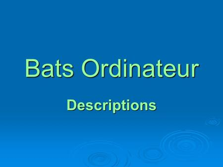 Bats Ordinateur Descriptions. Comment es-tu? What are you like?