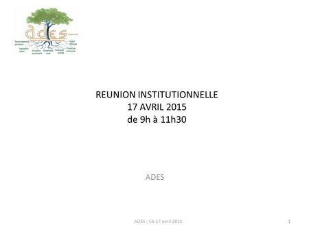REUNION INSTITUTIONNELLE 17 AVRIL 2015 de 9h à 11h30 ADES ADES - CS 17 avril 20151.