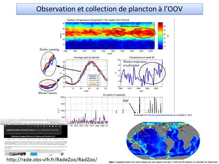 Observation et collection de plancton à l'OOV