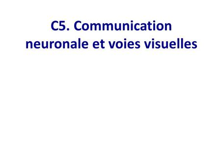 C5. Communication neuronale et voies visuelles