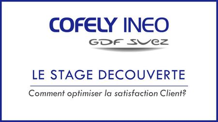 LE STAGE DECOUVERTE Comment optimiser la satisfaction Client?
