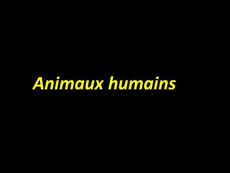 Animaux humains.