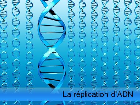La réplication d'ADN.