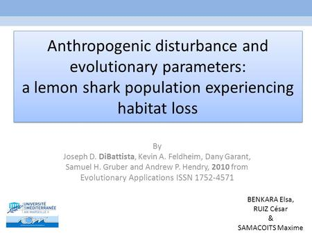 Anthropogenic disturbance and evolutionary parameters: a lemon shark population experiencing habitat loss By Joseph D. DiBattista, Kevin A. Feldheim, Dany.
