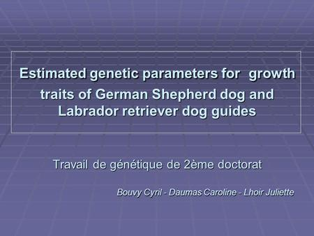 Estimated genetic parameters for growth traits of German Shepherd dog and Labrador retriever dog guides Travail de génétique de 2ème doctorat Bouvy Cyril.
