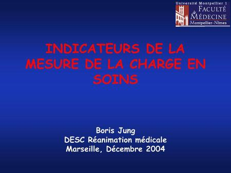 INDICATEURS DE LA MESURE DE LA CHARGE EN SOINS