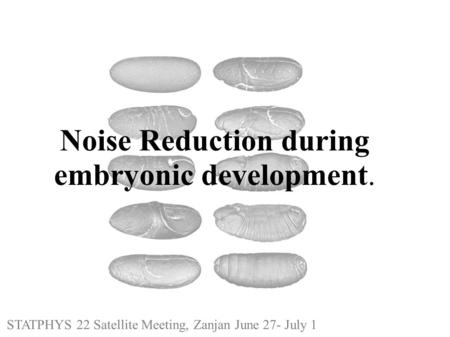 Noise Reduction during embryonic development. STATPHYS 22 Satellite Meeting, Zanjan June 27- July 1.