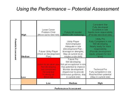 Using the Performance – Potential Assessment.
