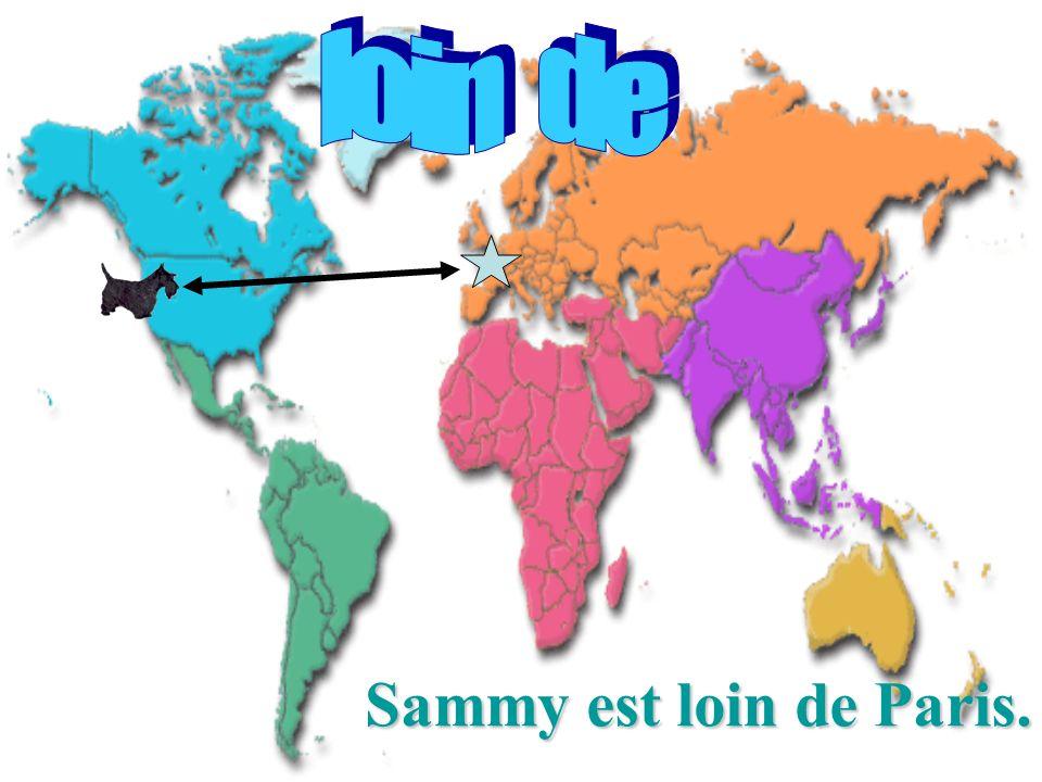 Sammy est loin de Paris.