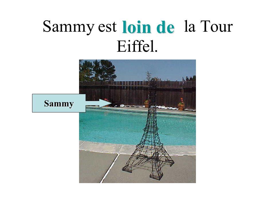 Sammy est la Tour Eiffel. Sammy loin de