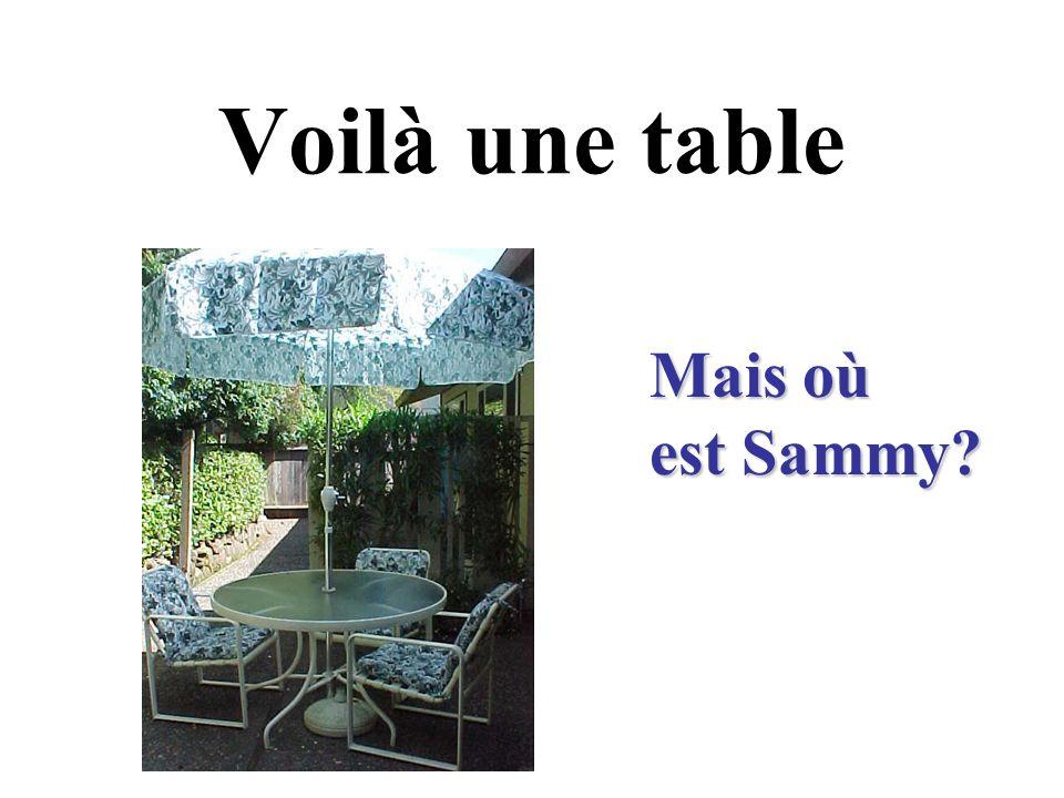 Voilà une table Mais où est Sammy?