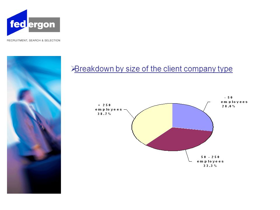 Breakdown by size of the client company type ( continuation )
