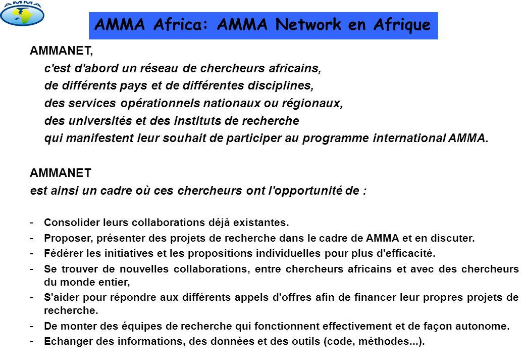 AMMA Africa: AMMA Network en Afrique Organismes: Niveau national: Comités locaux: dans chaque pays participant à AMMA Africa, un comité local est formé par les chercheurs locaux.