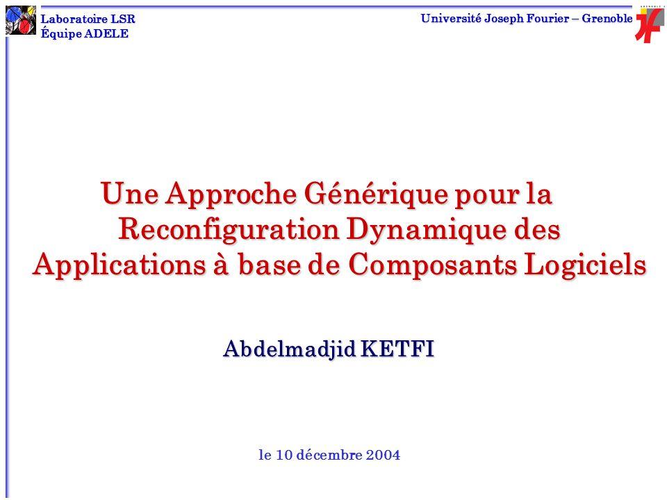LSR - ADELE UJF 2 Plan Motivation, objectif et cadre de travail État de lart Expérimentations Noyau générique pour la reconfiguration dynamique : DYVA Conception et implémentation Personnalisation Conclusion et perspectives