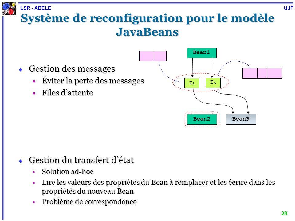 LSR - ADELE UJF 29 Synthèse des expérimentations