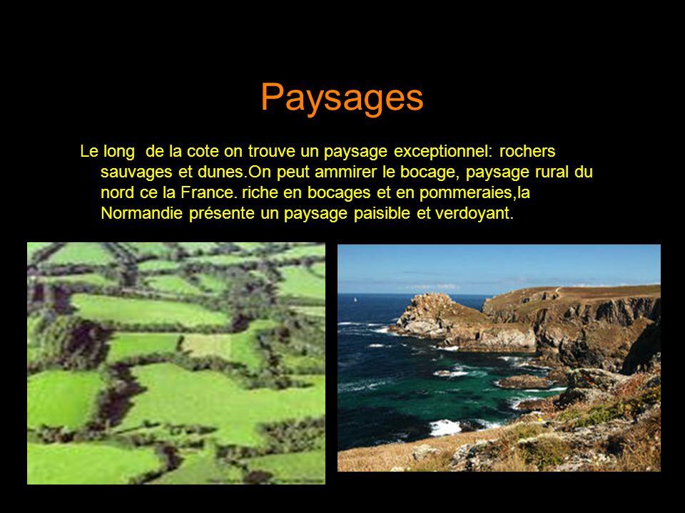 Paysages Le long de la cote on trouve un paysage exceptionnel: rochers sauvages et dunes.On peut ammirer le bocage, paysage rural du nord ce la France.
