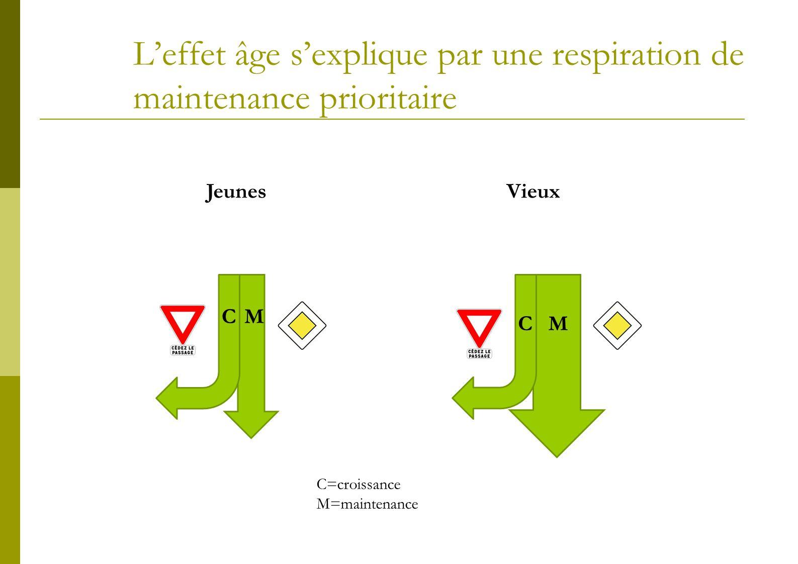 La restauration de lactivité photosynthétique prioritaire sur la croissance Les capacité photosynthétiques sont maintenues: 1.