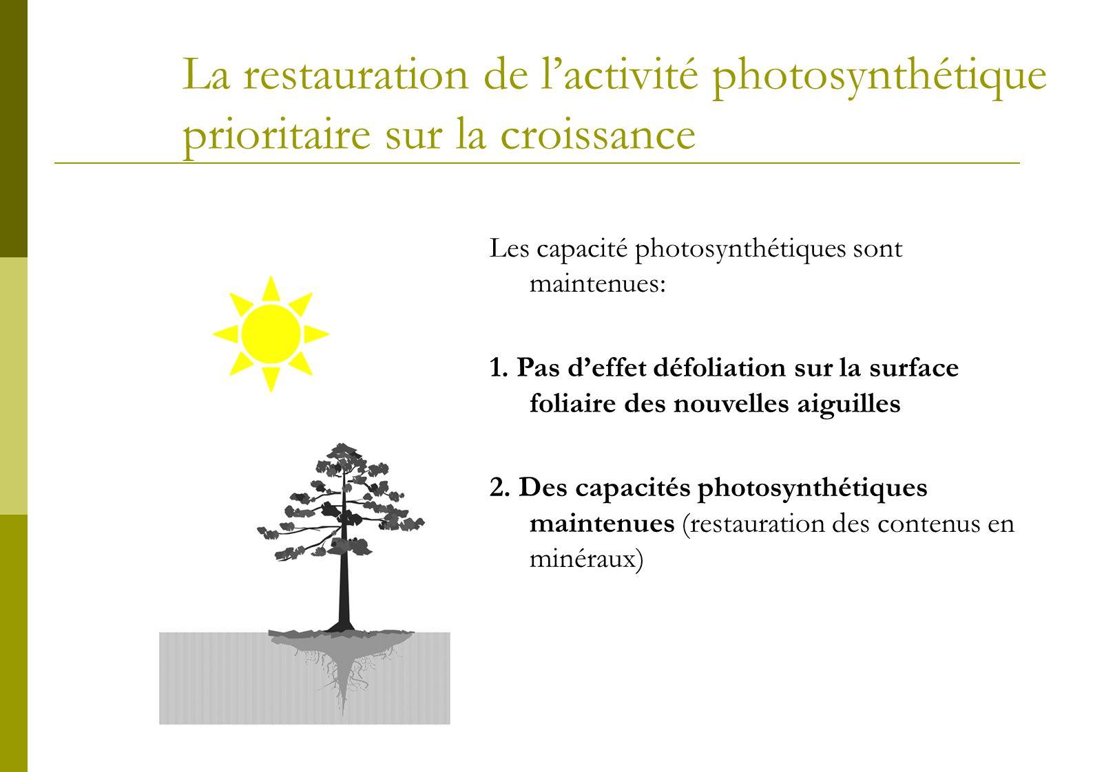La restauration de réserves prioritaire sur la croissance Pour de faibles intensités de défoliation etPour les jeunes arbres La restauration des réserves carbonées est prioritaire sur la croissance