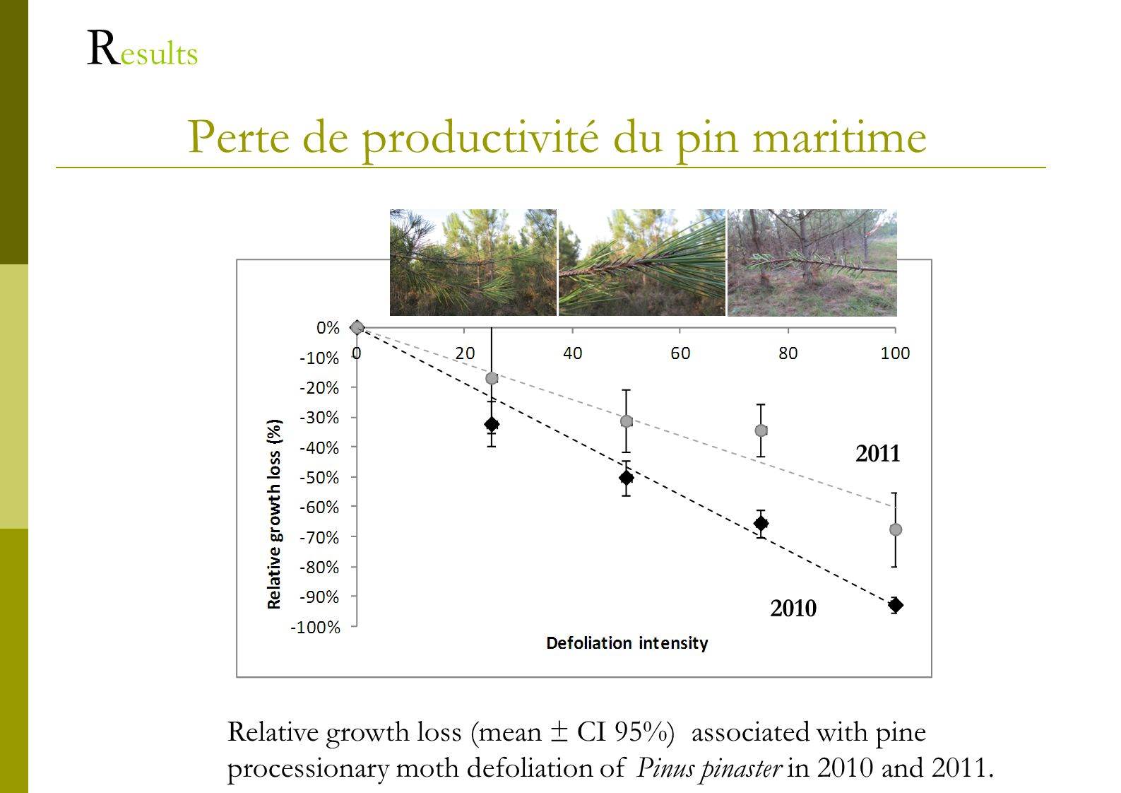 Perte de productivité du pin maritime R esults Relative growth loss (mean ± CI 95%) associated with pine processionary moth defoliation of Pinus pinaster in 2010 and 2011.