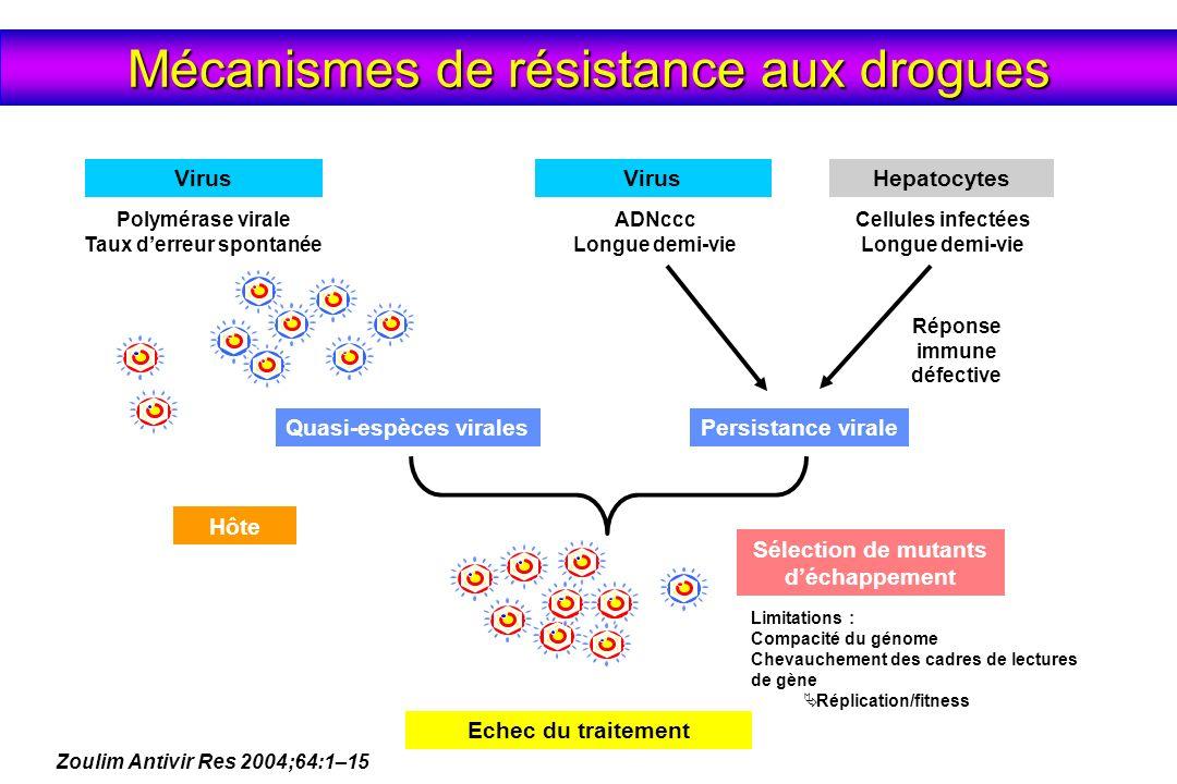 Apparition de mutations = Résistance génotypique Augmentation ADN VHB = Échappement virologique (> 1 log) Augmentation des ALATs = Réactivation RESISTANCE SECONDAIRE 3 PHASES